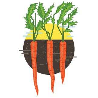 HotM_January_Carrots