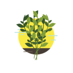 Protected: Herbs: Registered Sites Page