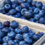 Herry's Blueberry Lemon Parfait